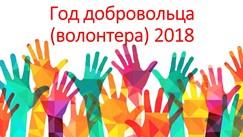 Год волонтера